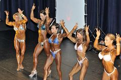 Line up of female bodybuilding contestants showing their best Stock Photos