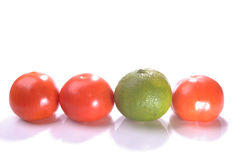 Line up lime Royalty Free Stock Photography