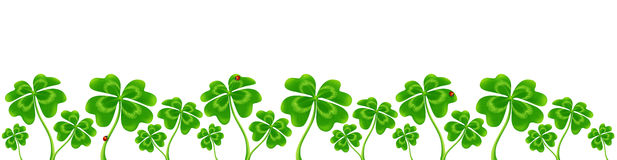 Line of vector four-leaf clovers, vector Saint Patrick`s Day border Stock Photography