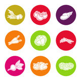 Line vegetable icon set Stock Images