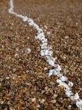 Line of white shells on beach Royalty Free Stock Photos