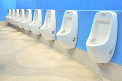 Line of white urinals with colorful blue wall Stock Photography