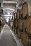 Line of wine barrels Stock Images