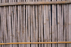A line of yellow bamboo wall that fade and age by time.ฺฺ Royalty Free Stock Photography