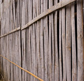 A line of yellow bamboo wall that fade and age by time.ฺฺ Stock Photos