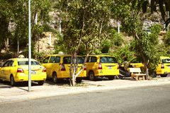 Line of yellow taxi cabs on a sunny day royalty free stock image