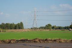 Linea ad alta tensione elettrica Fotografia Stock Libera da Diritti