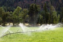 Linea attrezzatura agricola della ruota di irrigazione dello spruzzatore Immagini Stock