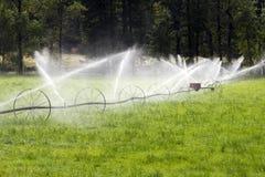 Linea attrezzatura agricola della ruota di irrigazione dello spruzzatore Fotografie Stock
