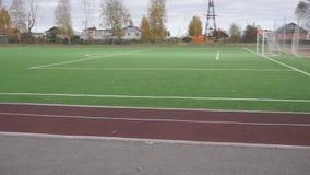 Linea bianca del campo di calcio Colpo orizzontale del cursore del primo piano archivi video