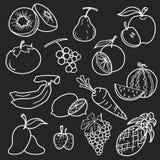 Linea bianca progettazione stabilita della frutta di vettore dell'estratto di tiraggio illustrazione vettoriale