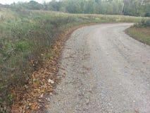 Linea bordo della strada delle foglie immagine stock