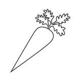 Linea carota dell'icona Fotografie Stock