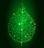 Linea collegata foglia del punto dei punti del triangolo Il concetto della natura di Eco su fondo verde accende icona bassa di po royalty illustrazione gratis