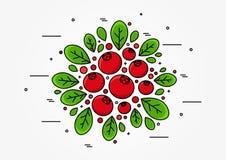 Linea concetto del mirtillo rosso di vettore di arte illustrazione vettoriale