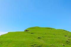 Linea costiera, addio del capo, isola del sud, Nuova Zelanda Immagine Stock