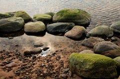 Linea costiera alla sorgente 3 Fotografie Stock