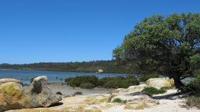 Linea costiera australiana Immagini Stock