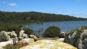 Linea costiera australiana del sud Fotografie Stock