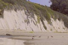 Linea costiera bianca del sud della roccia di California Fotografia Stock