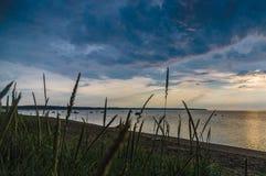 Linea costiera con erba asciutta alta al tramonto Fotografia Stock