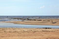 Linea costiera del deserto Fotografia Stock Libera da Diritti