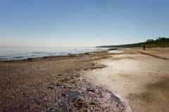 Linea costiera del mare Fotografia Stock Libera da Diritti