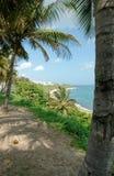 Linea costiera del Porto Rico Fotografia Stock Libera da Diritti