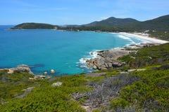 Linea costiera del sud dell'oceano nel parco nazionale del promontorio di Wilsons Fotografia Stock