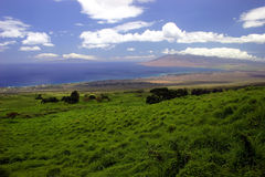 Linea costiera dell'isola del Maui, Hawai Fotografia Stock Libera da Diritti