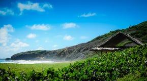 Linea costiera dell'isola di Mustique Fotografia Stock Libera da Diritti