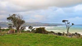 Linea costiera della collina di Firenze in Nuova Zelanda Immagini Stock