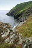 Linea costiera della Cornovaglia Fotografia Stock Libera da Diritti