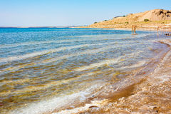 Linea costiera della spiaggia del mar Morto in Giordania Fotografia Stock