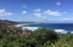 Linea costiera delle Barbados Immagini Stock