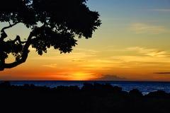 Linea costiera delle Hawai di tramonto fotografie stock libere da diritti