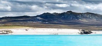 Linea costiera delle Malvinas Fotografia Stock