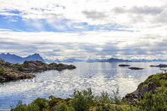 Linea costiera di Lofoten vicino a Svolvaer, Norvegia Immagine Stock Libera da Diritti