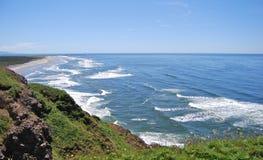 Linea costiera di Washington vicino al faro capo del nord Fotografia Stock Libera da Diritti