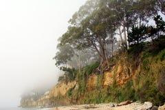 Linea costiera nordica della California Fotografie Stock Libere da Diritti