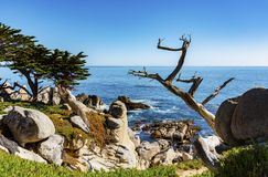 Linea costiera rocciosa della costa ovest U.S.A. immagini stock