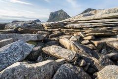 Linea costiera rocciosa sulle isole di Lofoten Immagine Stock Libera da Diritti