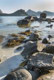Linea costiera rocciosa sulle isole di Lofoten, Norvegia Fotografie Stock Libere da Diritti