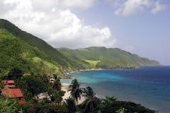 Linea costiera tropicale Immagine Stock