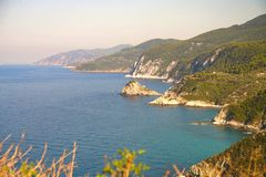 Linea costiera vicino alla spiaggia un giorno soleggiato, Grecia di Agnontas immagine stock