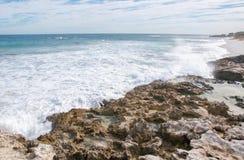 Linea della costa dell'isola del pinguino Fotografia Stock