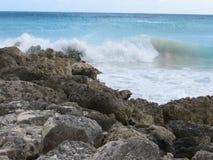 Linea della costa delle Barbados Fotografia Stock Libera da Diritti