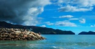 Linea della costa in Nuova Zelanda Immagine Stock