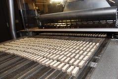 Linea della fabbrica di produzione della cialda e del biscotto Nastro trasportatore fotografia stock libera da diritti