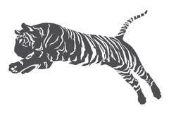 Linea della tigre Fotografie Stock
